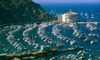 Catalina Fun Tours - Multiple Locations: Boat Tour to Catalina for One, Two, or Four from Catalina Fun Tours (Up to 52% Off)