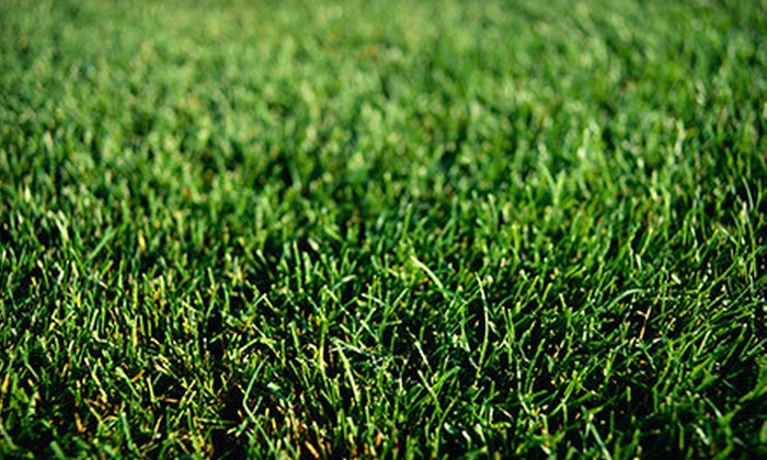 Weed Man - Wheeling: $25 for a Weed-Control-and-Crabgrass Treatment from Weed Man (Up to $64 Value)