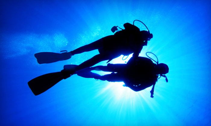 Divers Incorporated - Pittsfield: PADI Discover Scuba Diving Experience, or Five Weeks of Scuba Instruction at Divers Incorporated (Up to 50% Off)