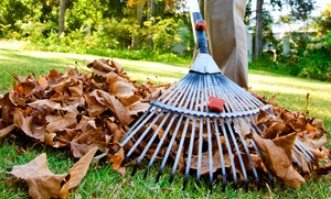 The Grounds Guys: $149 for Fall Cleanup Services from The Grounds Guys ($300 Value)