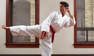 Martial Arts Academy - Madison: Two Weeks or One Month of Tae Kwon Do Lessons with Uniform and Lesson at Martial Arts Academy (Up to 87% Off)