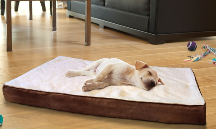 Orthopedic Pet Beds Groupon Goods