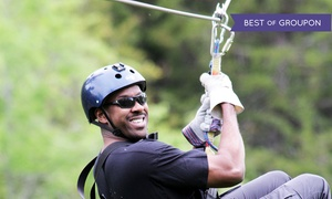 Wahoo Zip Lines: Zipline Tour for One, Two, or Up to Six at Wahoo Ziplines (Up to 49% Off)