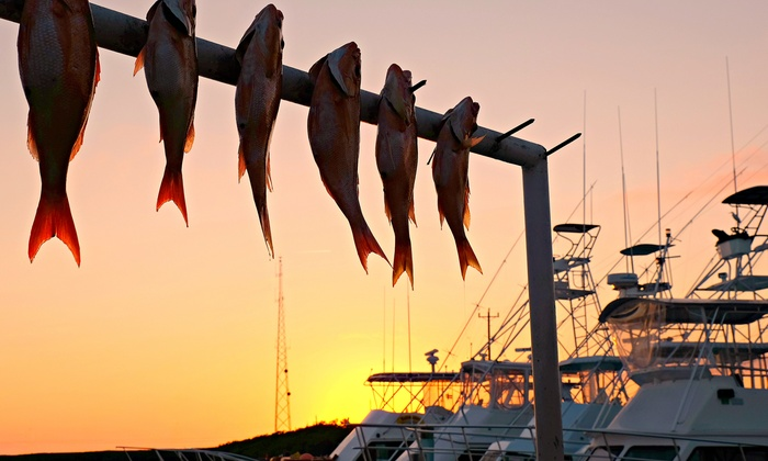 Reel River Tours and Charters - Reel River Tours and Charters: $175 for Night Fish Gigging Tour for Four from Reel River Tours and Charters ($350 Value)