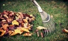 Utah Lawn: $69 for a Fall Lawn-Care Package with Aeration and Leaf Cleanup and Hauling from Utah Lawn ($150 Value)
