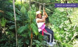 Botanical World: Zipline Adventure, Segway Adventure, or Garden Pass at Botanical World (Up to 79% Off)