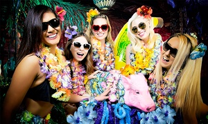 Everyone Gets Lei's: Everyone Gets Lei's Hawaiian-Themed Pub Crawl at MB Financial Park on May 24 (Up to 40% Off)