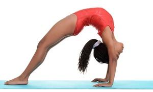 Krafft Academy of Gymnastics: Four or Eight Classes at Krafft Academy of Gymnastics (Up to 51% Off)