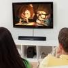 Liger Amplified Digital Indoor HDTV Antenna