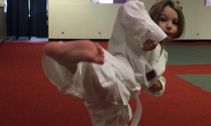 High Kick Tae Kwon Do - Sayville: $40 for $115 Worth of Martial-Arts Lessons — High Kick T K D