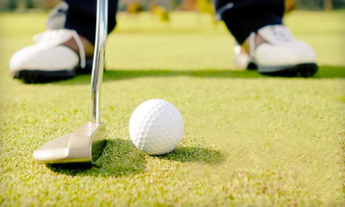 Saratoga Springs Golf Range - Saratoga Springs: Three or Five Large Buckets of Driving-Range Balls at Saratoga Springs Golf Range (Up to 56% Off)