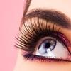 Up to 62% Off at Blink Eyelash Salon
