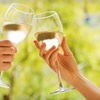 Up to 56% Off Wine Tasting in Los Olivos