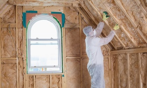 Eco Tec Insulation: $59 for an Attic Energy Evaluation and Thermal Camera Scan from Eco Tec Insulation ($199 Value)