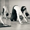 Up to 73% Off Classes at Yoga Collective