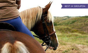 Chain O' Lakes State Park Riding Stable: $15 for a 40-Minute Horseback Trail Ride at Chain O' Lakes State Park Riding Stable ($28 Value)
