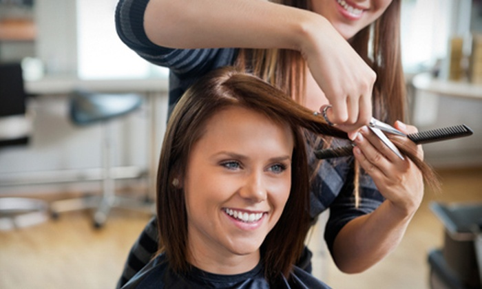 Salon at Surrey - Surrey Center: Shampoo, Haircut, Blowout, and Style with Option for Partial Highlights at Salon at Surrey (Up to 58% Off)