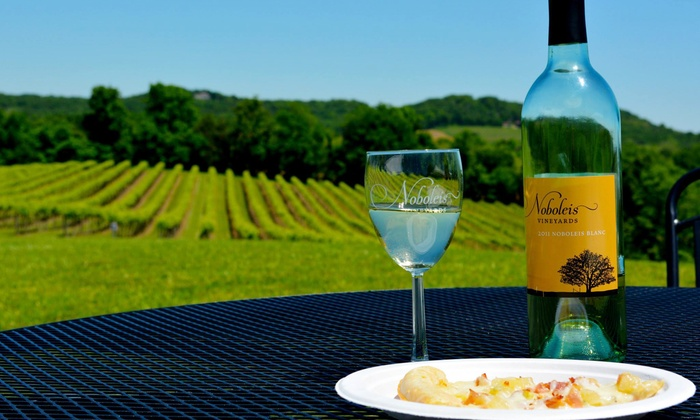 Noboleis Vineyards - Boone: Tasting-Room Pizzas, Salads, and Wines at Noboleis Vineyards (Up to 50% Off). Two Options Available.