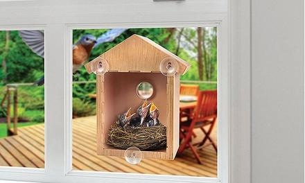1 o 2 Casette per uccelli in plastica con ventose