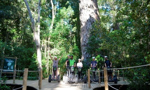 Tsitsikamma Segway Tours: One-Hour Segway Tour with Complimentary Bottled Water from R249 for One at Tsitsikamma Segway Tours (29% Off)