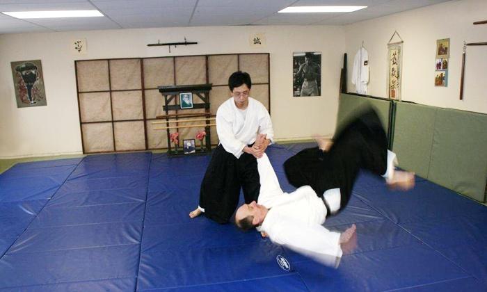 Fudoshin Aikikai - St. Johns: C$20 for One Month of Unlimited Aikido Classes at Fudoshin Aikikai (C$40 Value)
