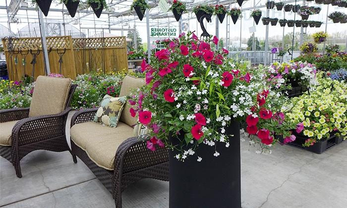 Floral Acres Greenhouses & Garden Centre - Southwest Saskatoon : C$11 for C$20 Worth of Plants and Garden Accessories at Floral Acres Greenhouses & Garden Centre