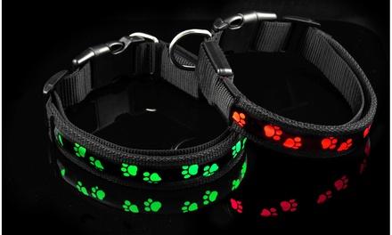 LED Reflective Paw Collar