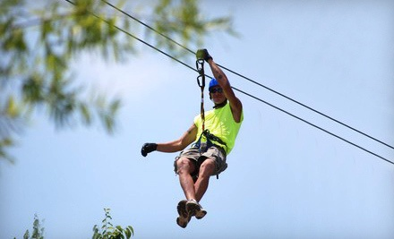 Zipline Canopy Tour and a Motorized Sky Surfer Ride (a $99.98 value) - Adventure Ziplines of Branson and Sky Surfer in Branson