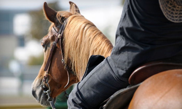 Serenity Stables & Event Facility - Boise: $35 for Two Basic Western Horse-Riding Lessons at Serenity Stables & Events Facility ($70 Value)