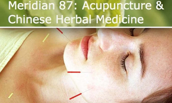Meridian 87: Acupuncture & Herbal Medicine  - North Center: $30 for 60-Minute Session at Meridian 87 Acupuncture ($75 Value)