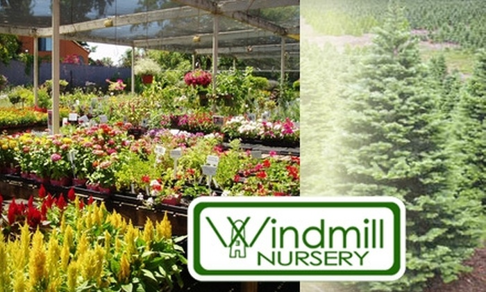 Windmill Nursery - Sacramento: $15 for $30 Worth of Plants and Supplies at Windmill Nursery in Carmichael