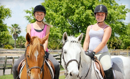 60-Minute Semiprivate Horseback-Riding Lesson (a $50 value) - Equestrian Connections in Delray Beach