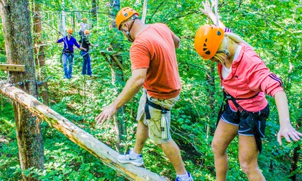 Climb, Zip, Swing or Little Zipper Experience at Adventureworks (Up to 54% Off). Six Options Available.