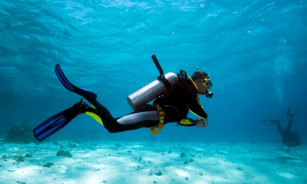 Discover Scuba or Open-Water Diver-Certification Course for One or Two at HydroSports Dive and Travel (Up to 60% Off)