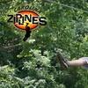 Up To Half Off Zipline Tour