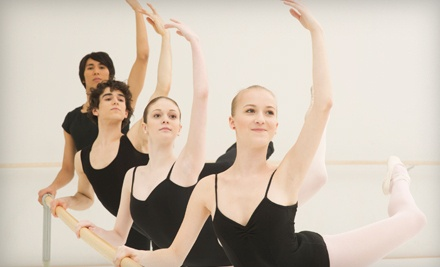 5-Class Punch Card (a $115 value) - The Ballet Center in Ronkonkoma