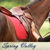 56% Off Horseback Riding Lesson