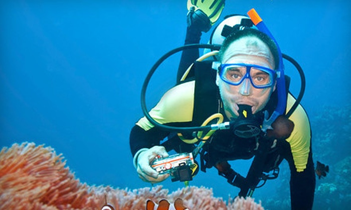 Motor City Scuba and Snorkel - Multiple Locations: Discover Scuba Course for One or Two at Scuba and Snorkel Center and Motor City Scuba (Up to 59% Off)