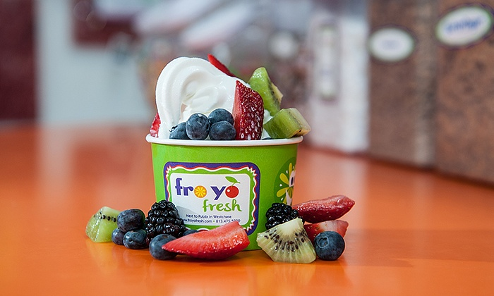 Froyo Fresh - Froyo Fresh Frozen Yogurt: $12 for Two Groupons, Each Good for $10 Worth of Food and Drink at Froyo Fresh ($20Value)