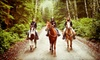 Uncle Terry's Birthday Parties & Pony Rides - Lebanon: $30 for a One-Hour Guided Horseback Trail Ride from Uncle Terry's Birthday Parties & Pony Rides ($60 Value)
