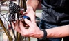 OOB Upgrade Cycle Works - Goose Island: $37 for Bicycle Tune-Up at Upgrade Cycle Works ($79 Value)