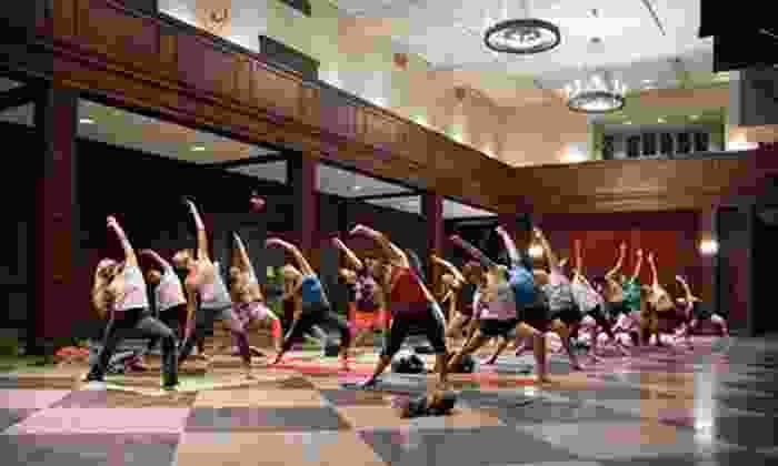 Sankhya Yoga School & Wellness Center - Northern Liberties/ Fishtown: $30 for 10 Drop-In Classes at Sankhya Yoga School & Wellness Center ($70 Value)