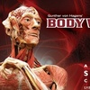 Up to Half Off Admission to Body Worlds Exhibit