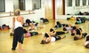 Dance Ink - Westmont: $65 for 10 Drop-In Fitness and Dance Classes at Dance Ink ($130 Value)