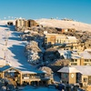 Mount Buller: Sightseeing Trip with Entry Fee