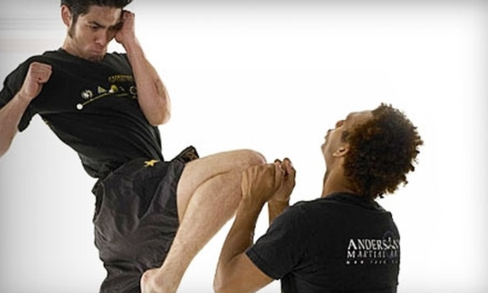 Anderson's Martial Arts Academy - New York: $25 for Five Drop-In Classes at Anderson's Martial Arts Academy ($175 Value)