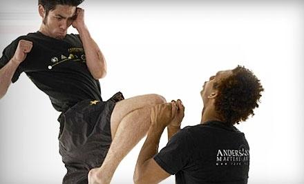 Anderson's Martial Arts Academy - Anderson's Martial Arts Academy in New York