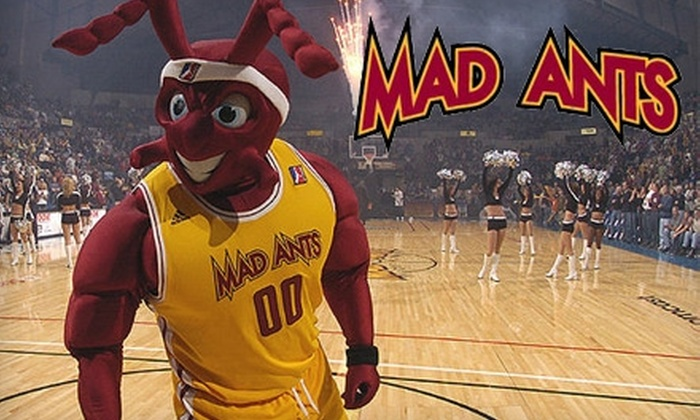 Mad Ants Basketball - Fort Wayne: $5 for a Lower-Level Ticket to See the Fort Wayne Mad Ants Christmas Day Game (Up to $20 Value)