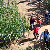 Up to 53% Off Group Passes to Farm in Zebulon