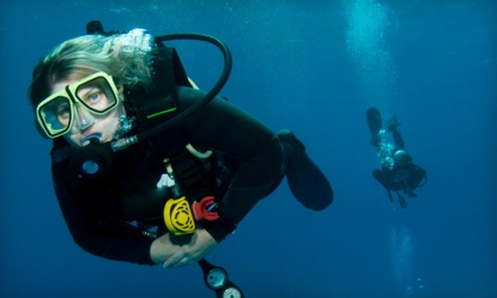 Lake Jocassee Dive Shop - Salem: $19 for One Introductory Scuba Class from Lake Jocassee Dive Shop in Central ($50 Value)
